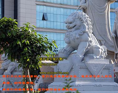 石狮子-花岗岩石狮子-汉白玉石狮子